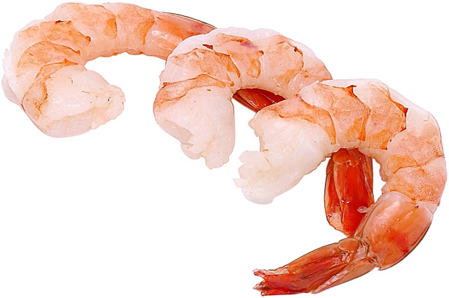 shrimp for sale