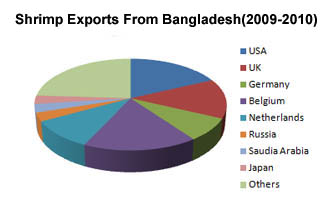 shrimp export from bangladesh