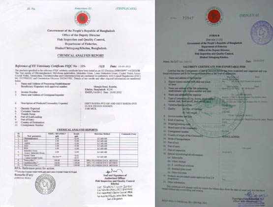 Bd Certificate Of Analysis | holidays |